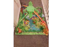 Fisher Price Rainforest playmat gym