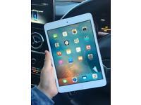 iPad mini 2nd gen/ Mint con / White and silver