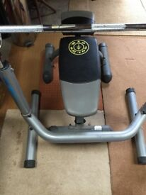 Golds Gym bench, weight rack and bar - hardly used