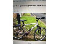 Marin cycle