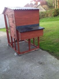 Hen house for 4 layers with nesting boxes.