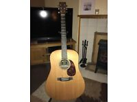 Martin and co. DX1RAE guitar