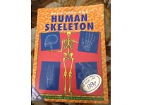 Build Your Own Human Skeleton Book by Parragon