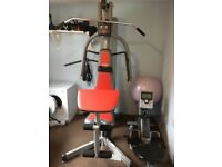 Multi Gym for sale. Additional Lat Bar included. Price reduced by 50%