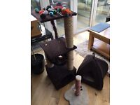 Cat/Kitten Scratching Posts, Igloo bed + Kitten Toys