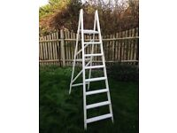 Wooden Painted Ladder