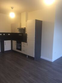 1 bedroom flat luxuriously finished after extensive refurbishment
