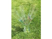 Glass champagne flutes with holder