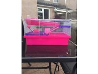 Rosewood PICO pink and purple hamster cage