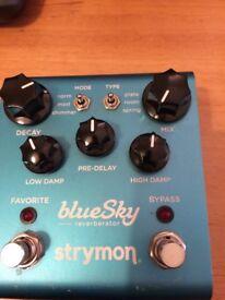 Blue Sky Strymon guitar reverbpedal