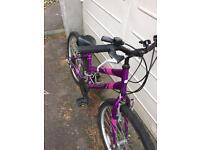 Apollo Purple Bike