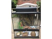 Vivarium and accessories for sale- Used: Good condition