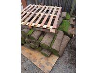 65sqm fresh turf - supreme quality job lot £200