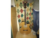 staggs guitar
