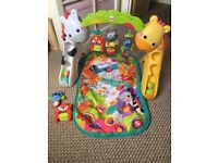 Fisher price baby to toddler play gym