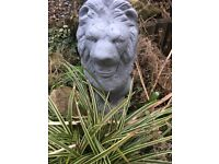 Beautiful Pair of Stone Garden Lions Painted Grey