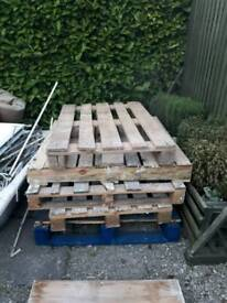 Wooden pallets FREE !