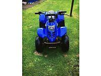 50cc quad bike thundercat