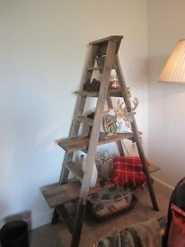 A lovely up-cycled Step Ladder ideal for displaying ornaments and collectibles.