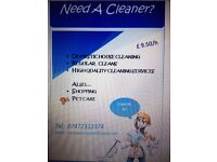 House cleaner, shopping, pet care