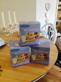 Lansinoh Breast pads 3 boxes