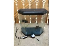 Small fish tank approx 30cm x 30 cm x 15 cm with pump and light