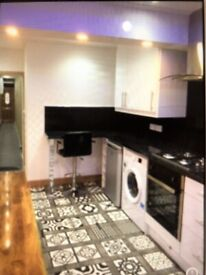 Stylish One Bedroom Flat Moments to Bethnal Green Station, Easy Access to Liverpool Street