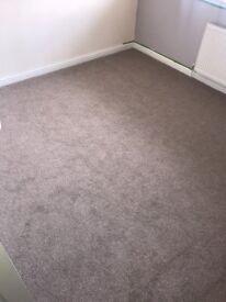Cream/Beige Good As New Carpet