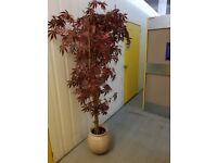 Artificial Maple tree with plant pot