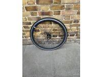 Single speed bicycle rear wheel