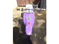 Razor Electric scooter (mophead)