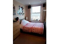 Two Large Double Rooms Available in friendly House Share, Central Brighton