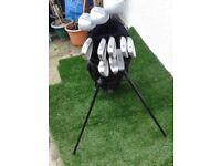 *** FULL SET GOLF CLUBS + GOLF BAG WITH STAND + BALLS + TEES ***