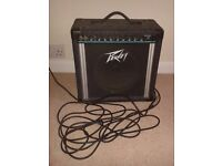 PEAVEY Envoy 110 Guitar Amplifier 35W Amp with Spring Reverb - DELIVERY AVAILABLE
