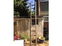 Wooden ladder 2 x 9'