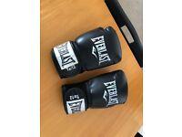 Everlast Men's PU Rodney Boxing Glove. 12oz size.