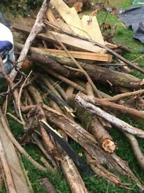 Free wood for bonfire night