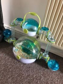 3x Dwarf Hamsters with cage