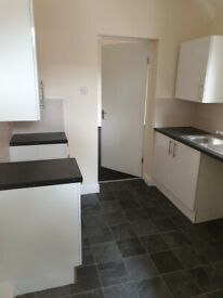 STUNNING 2 BED UPPER FLAT TO RENT ON SALTWELL STREET, GATESHEAD. DSS IS CONSIDERED.