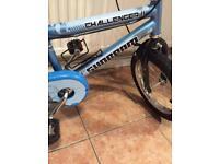 Boys small bike new Raleigh challenger sunbeam
