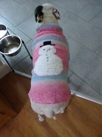 Hand Knitted Pet Jumpers