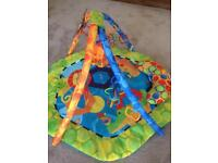 Fisher Price Baby Playmat and Gym