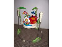 ***Fisherprice Rainforest Jumperoo baby bouncer*** can deliver*