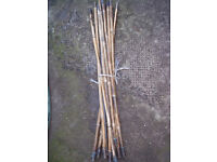 DRAIN /CHIMMNEY RODS