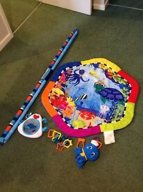 Baby play mat / play gym.