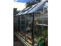 Full glazed Greenhouse 6x8