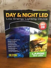 Reptile Day And Night Light