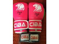 10 OZ Boxing Gloves Entry Level High Quality PU & Spec. plus FREE Hand wraps MMA