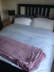 Luxury duvet cover and pillow cases for sale (king size)