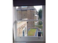 Omilian Window Renovation Sash Repair Glazing